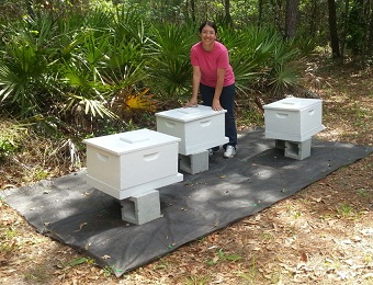Kathy Fitos and her Bees